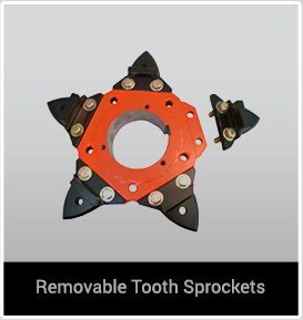 removable-tooth